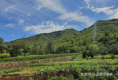 Huangmiaogou Provincial Forest Park