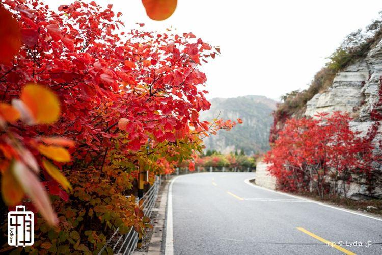 Liushi Road1