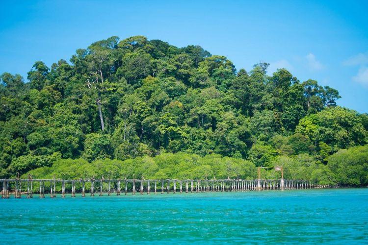 Shizi Island2