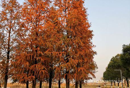 Hangzhouwan Xinqu Zhongxin Hu Park