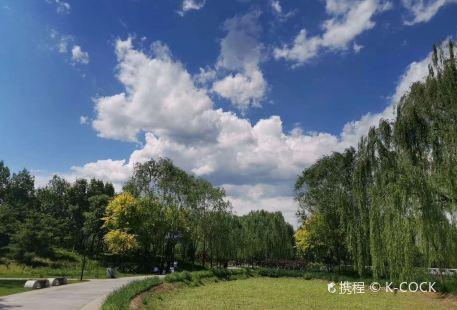玉泉山城郊森林公園