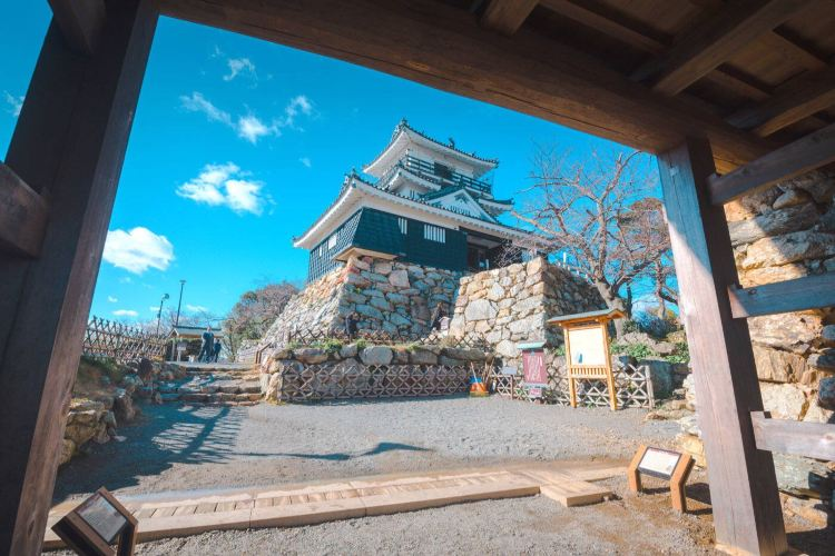 Hamamatsu Castle3