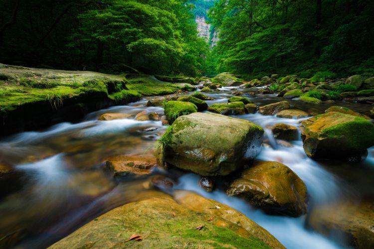 Golden Whip Stream (Jinbian Stream)4