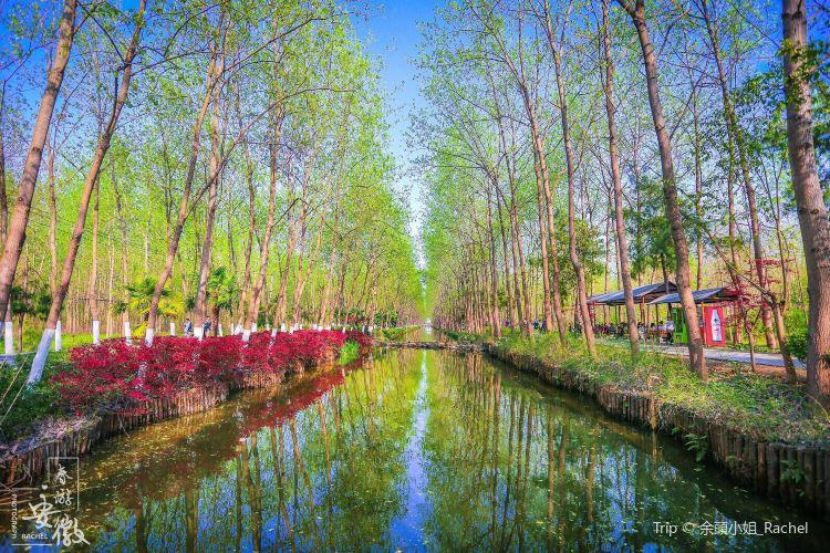 빈후 삼림 습지공원4
