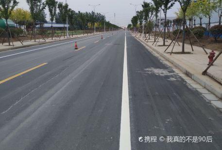Zhumadian Senlin Gongyuan Wangmei Water World
