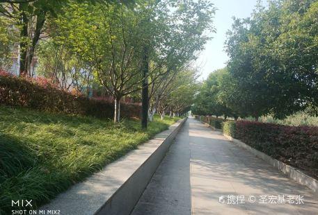 Jingyi Water Amusement Park (chongyang)