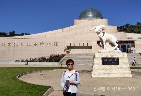 Hezheng Gudongwu Huashi Museum