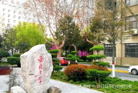 Northwest University(Taibai Campus)