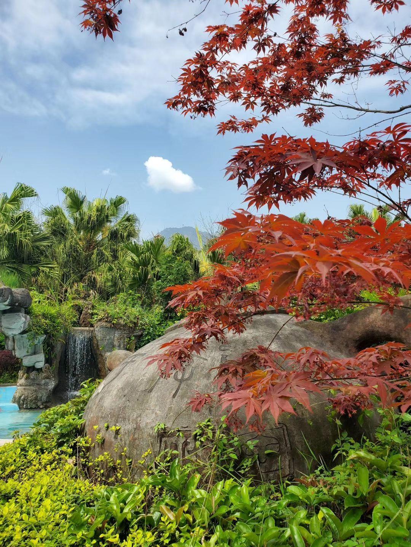 Zhougong Mountain Spa Garden