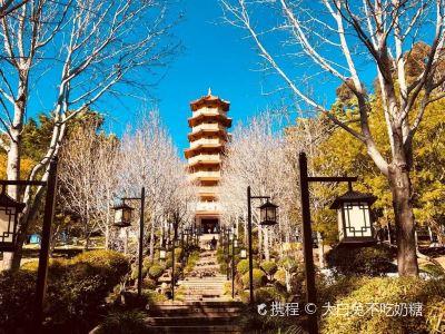 Nan Tien Temple