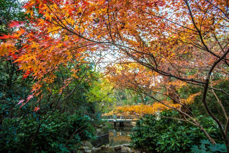 항저우 동물원(항주 동물원)3