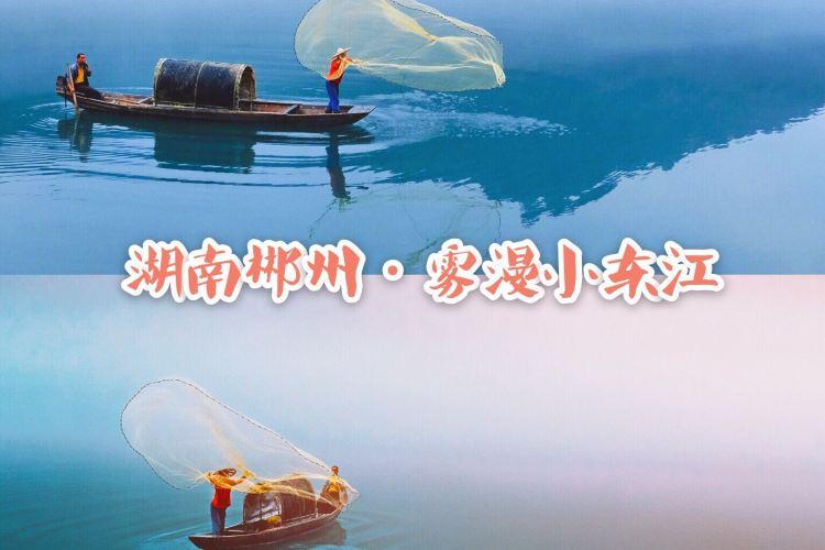 小東江觀霧棧道4