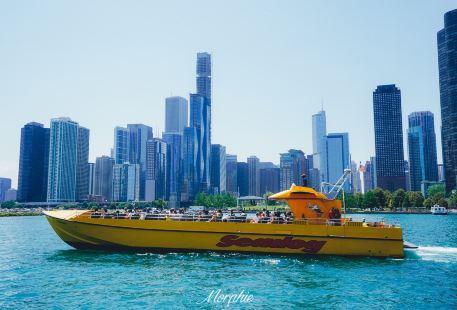 Seadog Chicago
