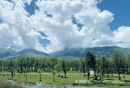 Yaowangshen Mountain