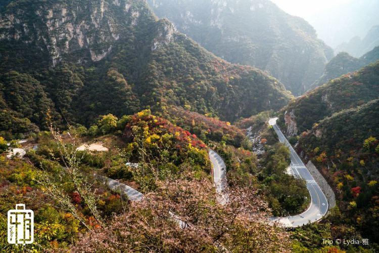 Liushi Road