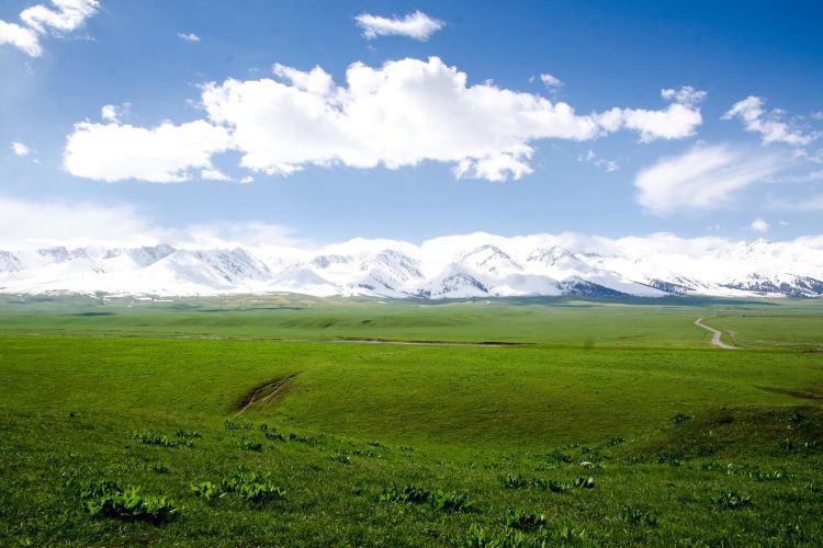 空中草原4