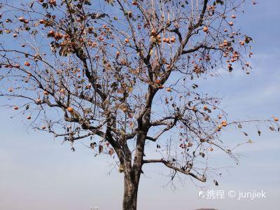 北京漁陽國際高爾夫