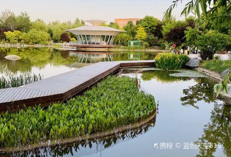 Xi'an Botanical Garden New District