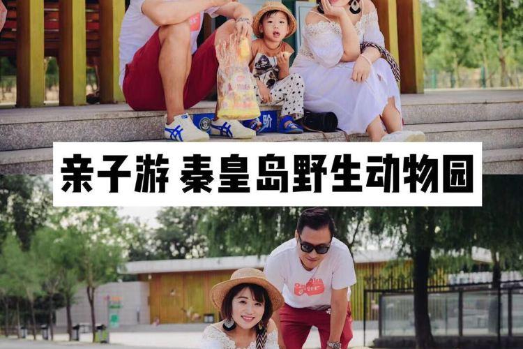 친황다오 야생동물원3