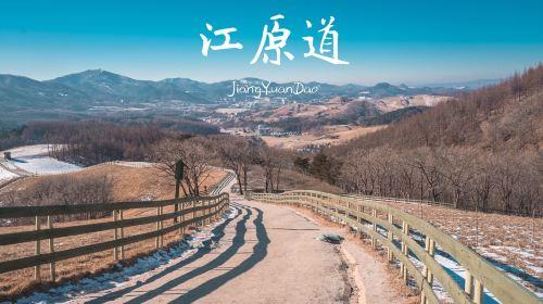 Daegwallyeong Sheep Farm