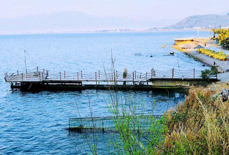 撫仙湖陽光沙灘