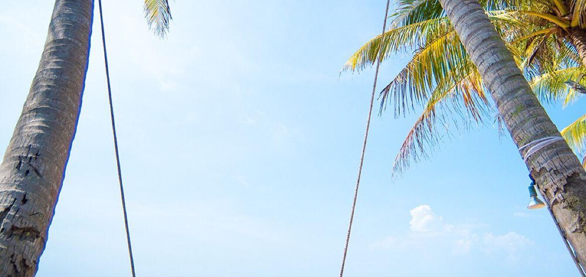 푸꾸옥 섬