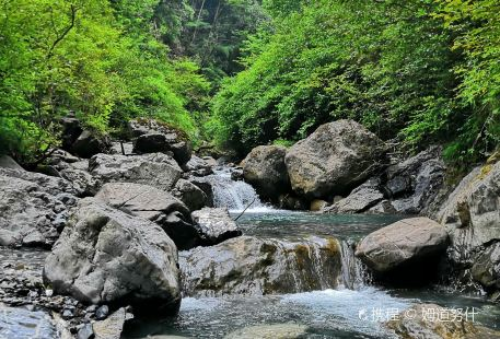 Jiguan Shan Senlin Gongyuan-Fengxi Mountain National Forest Park