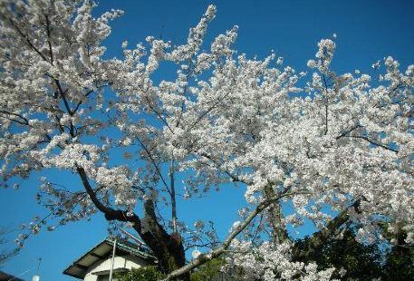 舊津山藩別邸庭園