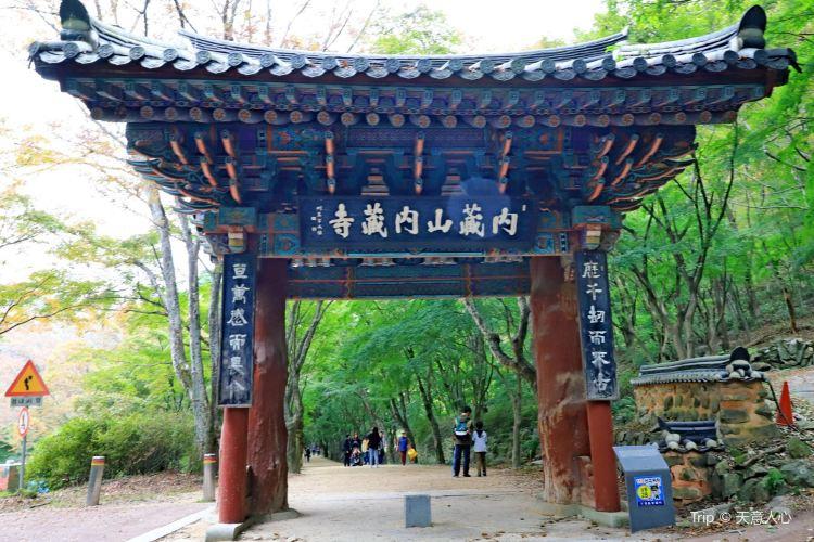 내장산국립공원4