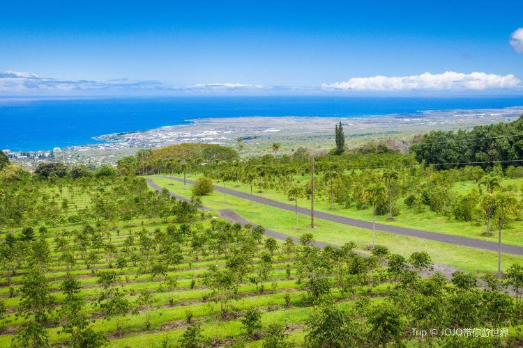 Big Island3