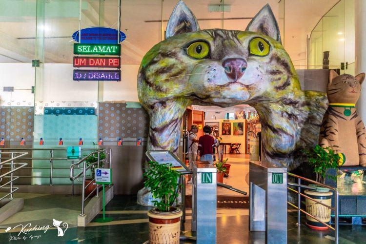 貓博物館1