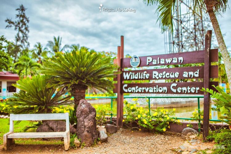 Palawan Wildlife Rescue and Consevation Center3