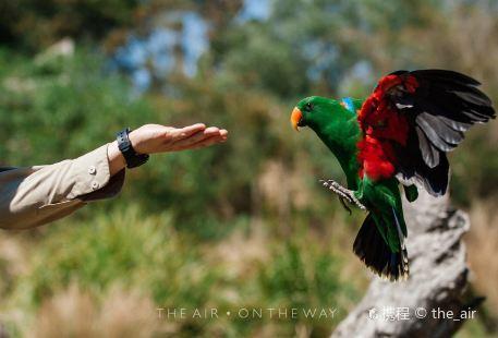 希爾斯維爾野生動物保護區