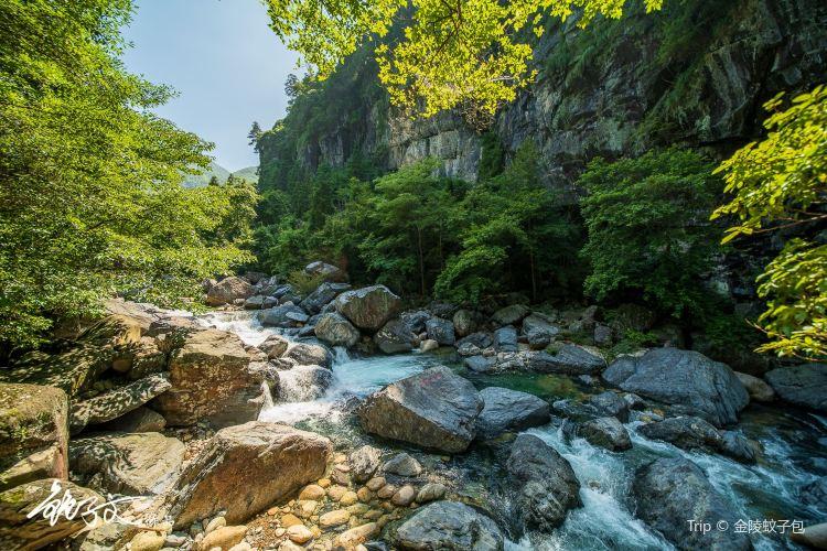 치먼구뉴장(기문고우강)1