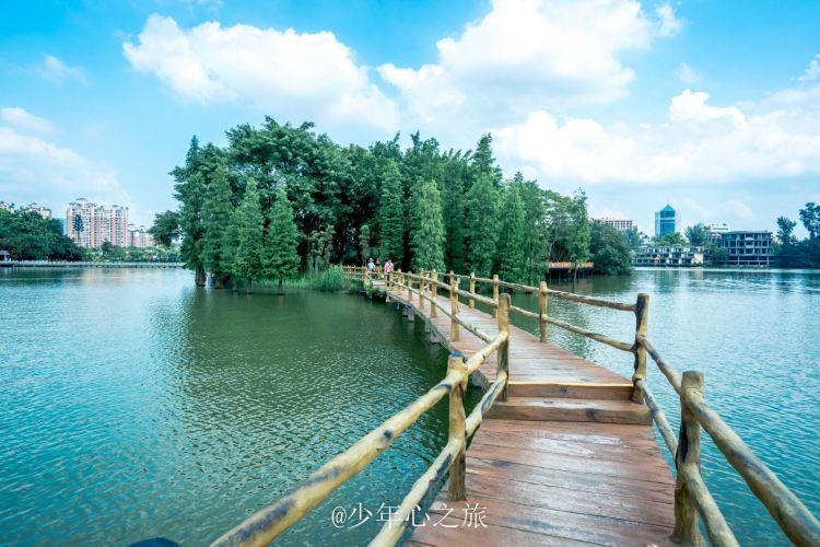 Xinghu Wetland Park1