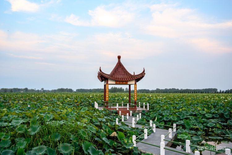 Huai'an Jinhu Hehuadang Scenic Area4