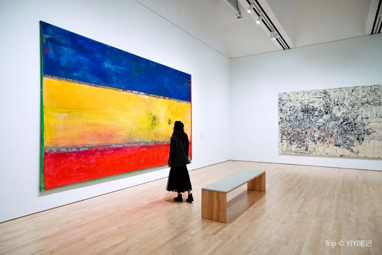 San Francisco Museum of Modern Art4