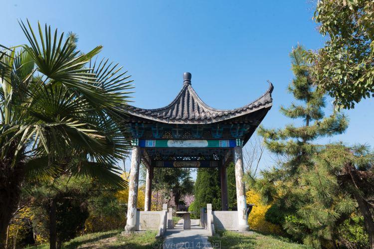 Hanxin Guli Relic Site3