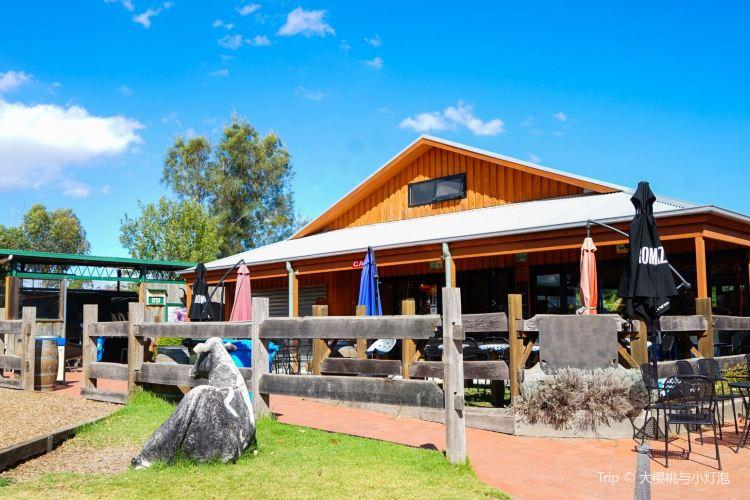 Ballarat Wildlife Park3