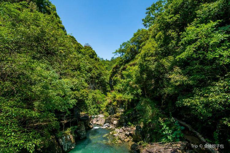 치먼구뉴장(기문고우강)2