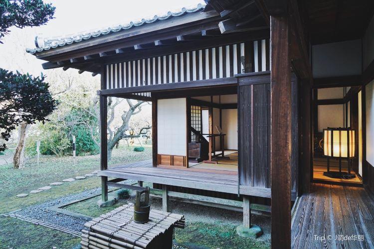Kodokan Park4
