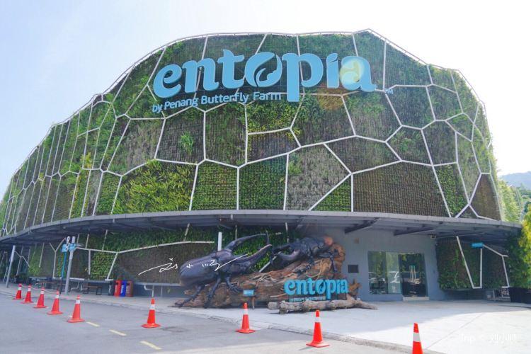 Entopia by Penang Butterfly Farm2