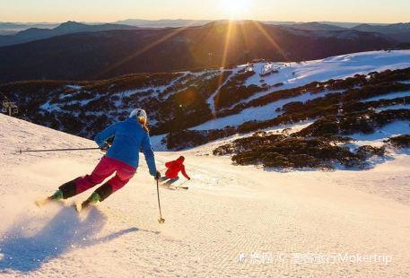 布勒山滑雪場