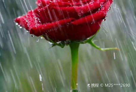 Fushunshi Juli Yezhan Tuozhan Xunlian Club