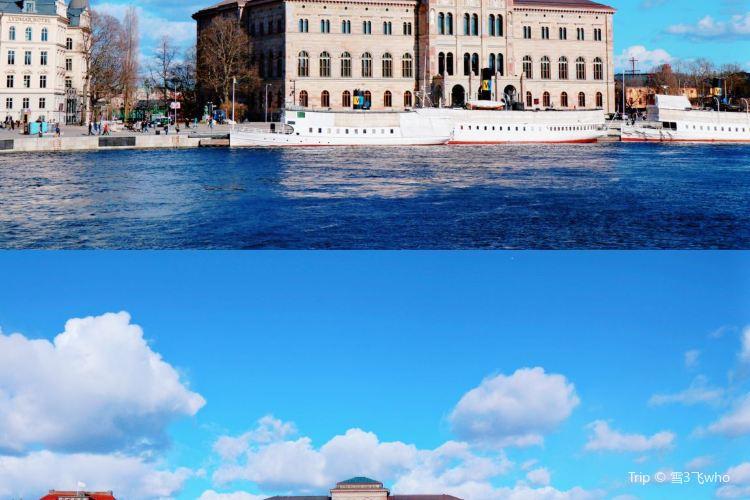 瑞典國家博物館3