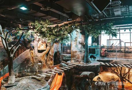 Duludulu Mengchong Amusement Park (diyibabaiban)
