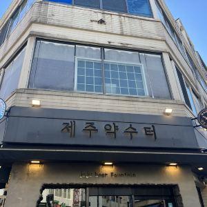 서귀포,추천 트립 모먼트