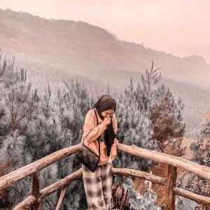 Bandung,Các đề xuất