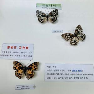 진주,추천 트립 모먼트