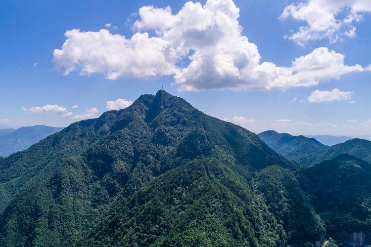 巾子峰森林公園2
